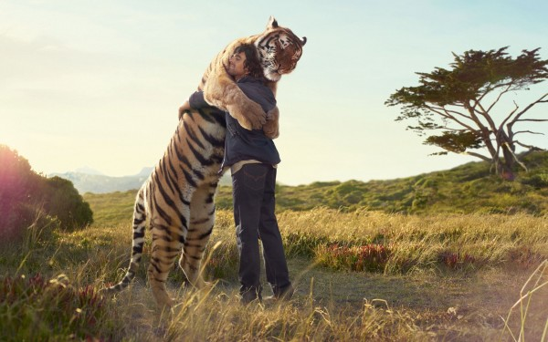 big-cat-hugs