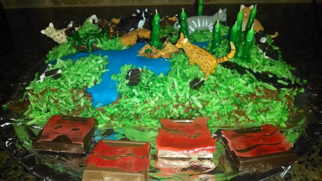 A Fabulous Warriors Birthday Cake