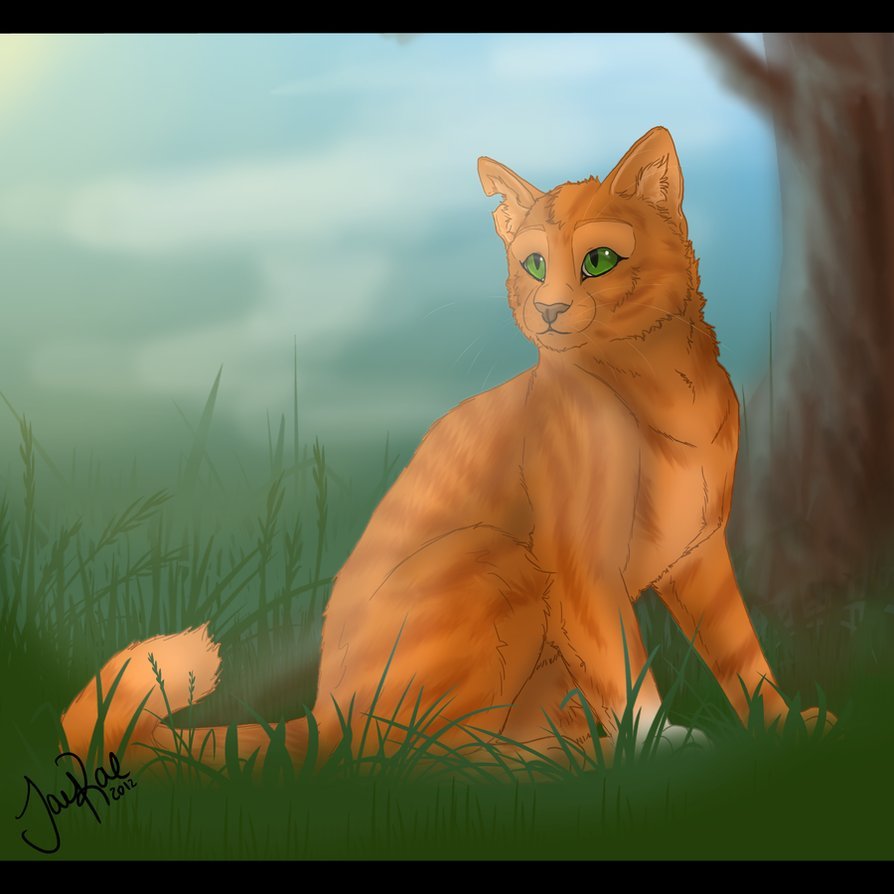 Warrior Cats A Vision Of Shadows Book 1: Squirrelflight_of_thunderclan_by_xxmoonwish-d4nq1od