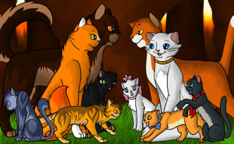 Fighting Techniques Warrior Cats