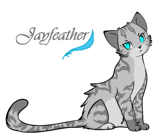 Warriors A Vision Of Shadows Book 1: Jayfeather