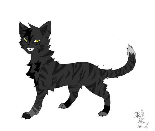 Warrior Cats A Vision Of Shadows Book 1: Darkstripe